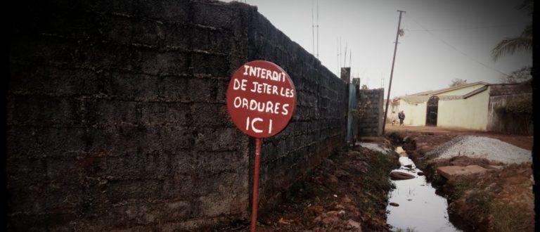 Article : Être un écologiste en Guinée, un parcours de combattant