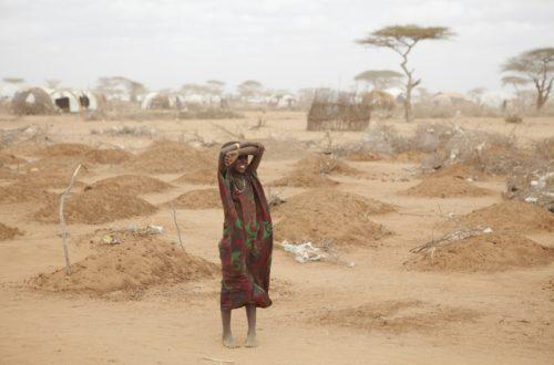 Article : Des solutions pour les réfugiés climatiques